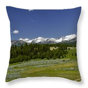 Lower Cottonwood Road Throw Pillow