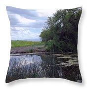 Lower Klamath Wildlife Refuge Throw Pillow