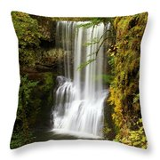 Lower South Falls At Silver Falls Throw Pillow