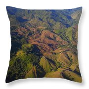 Lowland Tropical Rainforest Cleared Throw Pillow