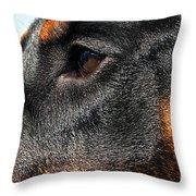Loyal Guardian Throw Pillow
