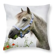 Lulu In The Poppy Field Throw Pillow