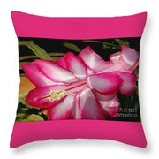 Luminous Cactus Flower Throw Pillow