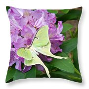 Luna Moth On Rhododendron 1 Throw Pillow
