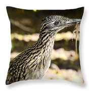 Lunch Anyone Throw Pillow
