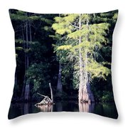 Lunker Lake Throw Pillow