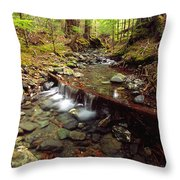 Lupin Creek, Strathcona Provincial Throw Pillow