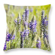 Lupine 2 Throw Pillow