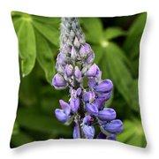 Lupine Throw Pillow