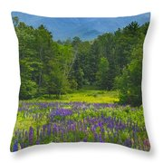 Lupine In Sugar Hill New Hampshire Throw Pillow