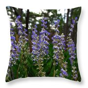 Lupine Patch Throw Pillow