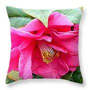 Luscious Pink Hdr Throw Pillow