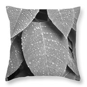 Lush Leaves And Water Drops 2 Bw Throw Pillow