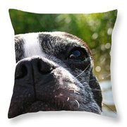 Luv A Mug Throw Pillow