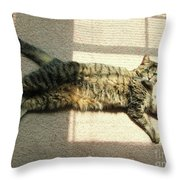 Lying In The Sunlight Throw Pillow