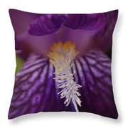 Macro In Purple Throw Pillow