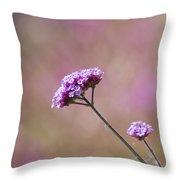 Macro Purple Flower Square Throw Pillow