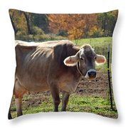 Mad Cow Tail Swish Throw Pillow