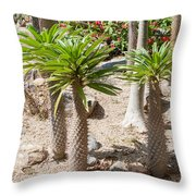 Madagascar Palms Throw Pillow