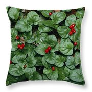 Madder Geophila Repens Fruiting Throw Pillow