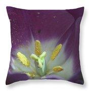 Magenta Magic Throw Pillow