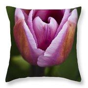 Magenta Tulip Throw Pillow