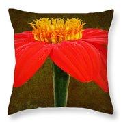 Magenta Zinnia Flower Throw Pillow