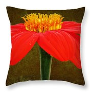 Magenta Zinnia Flower Throw Pillow