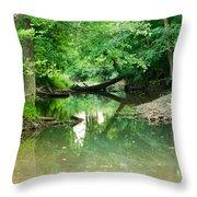 Magic Pond Throw Pillow