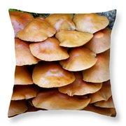 Magic Shelf Throw Pillow