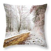Magic Trail Throw Pillow by Debra and Dave Vanderlaan