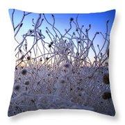 Magic Winter Morning Throw Pillow