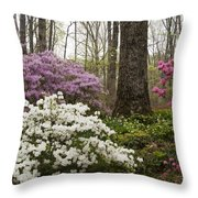 Magical Azaleas At Callaway Botanical Gardens Throw Pillow