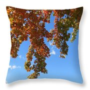 Magical Mother Nature Throw Pillow