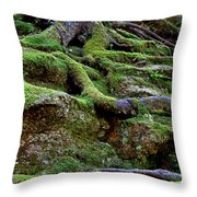 Magical Roots At Sabbath Day Throw Pillow