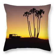 Magkadikadi, Botswana Throw Pillow