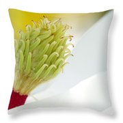 Magnificant Magnolia Macro  Throw Pillow