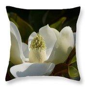 Magnificent Alabama Magnolia Blossom Throw Pillow