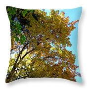 Magnificent Maples Throw Pillow