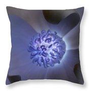 Magnolia Glow Throw Pillow