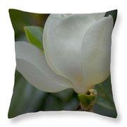 Magnolia Opening Throw Pillow