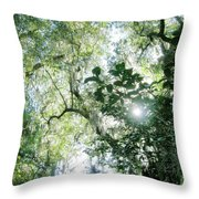Magnolia Plantation Sc Throw Pillow