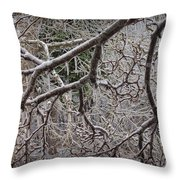 Magnolia Tree Branches Covered With Ice No.3834 Throw Pillow