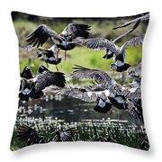 Magpie Geese In Flight Mcminn Lagoon Throw Pillow