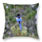 Magpie In Snow Throw Pillow