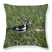Magpie Lark Throw Pillow