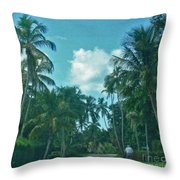 Mail Delivery In Paradise Throw Pillow