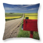 Mailbox On Country Road, Tiger Hills Throw Pillow