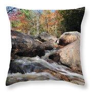 maine 29 Baxter State Park Trailside Stream Throw Pillow