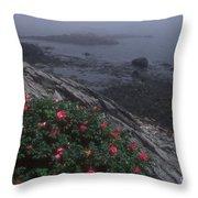 Maine Coastline Throw Pillow